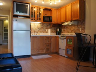 Voted Best 1/1 Lake Front Condo in Osage Beach - Lake Ozark vacation rentals