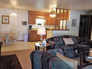 WALK 5 MIN TO LAMBEAU! HUGE CONDO! Sleeps 5! - Green Bay vacation rentals