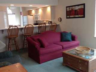 Welcome to our Penthouse Condo 3BA / 3 BA / Sleeps 8 - Branson vacation rentals