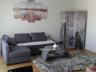Appartement spacieux proche Paris - Issy-les-Moulineaux vacation rentals