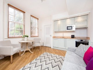 Beautiful Mayfair apartment with 2 bedrooms just 2 minutes walk from Oxford Street - London vacation rentals