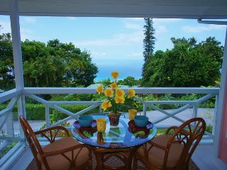 Charming House with Television and Satellite Or Cable TV - Holualoa vacation rentals