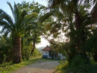 A Quaint Cottage with views to the Ionian Sea - Zakharo vacation rentals