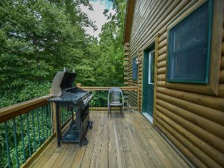 Immaculate 4 Bedroom Log home is ready to host your dream DCL getaway! - McHenry vacation rentals