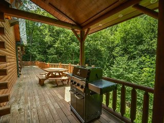 Beautiful tranquil setting alongside the stream - McHenry vacation rentals