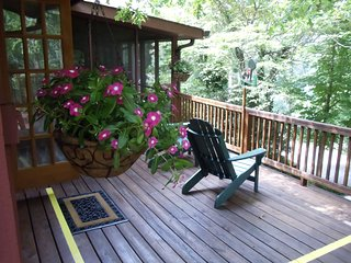 Comfortable Private room with DVD Player and Microwave - Dahlonega vacation rentals
