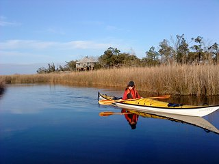 Beautiful house overlooking the Wolf River Marsh - Pass Christian vacation rentals