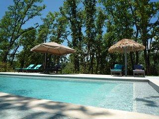 Maison avec piscine pour 6 pers, Saigon - Montauroux vacation rentals