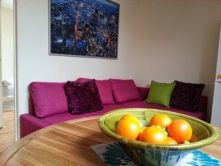 Two Bedroom loft apartment Brixton zone 2 - London vacation rentals