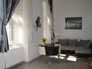 Happy Holiday Lux apartment  the center Budapest1 - Budapest vacation rentals