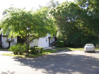 Beautiful Condo with Internet Access and A/C - Palm Harbor vacation rentals