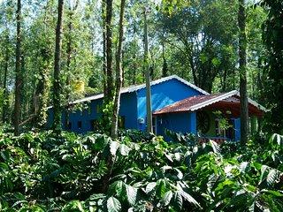Bright 5 bedroom Villa in Somvarpet - Somvarpet vacation rentals