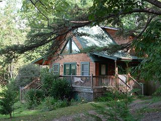 Pet Friendly Log Cabin With Hot Tub - Northside vacation rentals