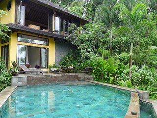 Nice 3 bedroom Villa in Kedewatan - Kedewatan vacation rentals