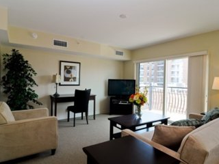 Bright and Lovely - 1 Bedroom 1 Bathroom Des Plaines Apartment - Des Plaines vacation rentals
