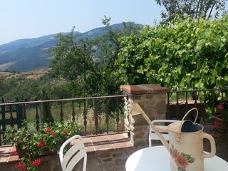 Charming house Tuscan-Emilian Apennines - Solignano vacation rentals