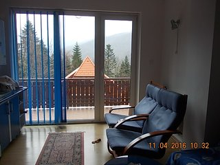 Luxury 2 room flat close to Peles royal castle - Sinaia vacation rentals