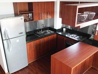 apartamento en providencia near to subway - Santiago vacation rentals