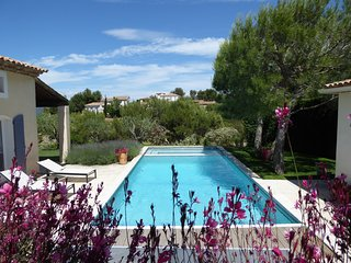 Luxury Mas with Large Pool/Jacuzzi on Golf Complex - Pont Royal vacation rentals
