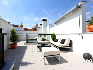 Corral del Rey Terrace 2. Duplex, chillout terrace - Seville vacation rentals