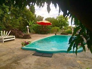 Appartement 55m2 piscine balneo - Ravine des Cabris vacation rentals