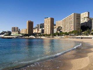 50m from Monaco Close to Grimaldi Forum & Larvotto - Beausoleil vacation rentals
