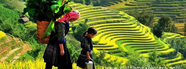 7 days Hai Phong Halong Ninh Binh Hanoi Sapa tour - Haiphong vacation rentals