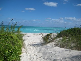 Carribean Villa- Steps from White Sand - Treasure Cay vacation rentals