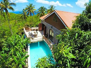 Perfect Villa with Housekeeping Included and Television - Soufriere vacation rentals