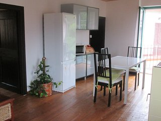 Nice Condo with Internet Access and Outdoor Dining Area - Omegna vacation rentals