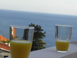 Vivenda Formosa - Studio with balcony and See View - Funchal vacation rentals