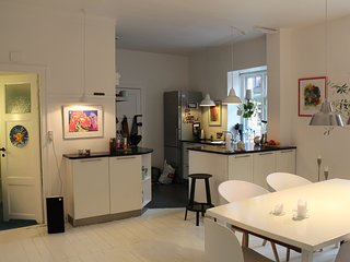 Beatiful and central appartment Copenhagen - Frederiksberg vacation rentals