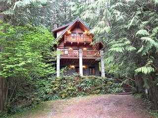 Mt. Baker Lodging Cabin 47 at Mount Baker! - Deming vacation rentals