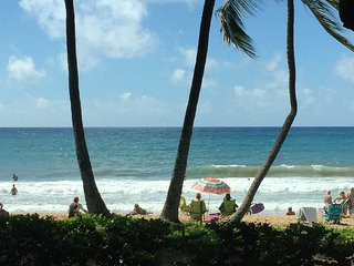 New Island Style, AC, 2 bed 2 bath, walk to beaches! Close to shops, restaurants - Kihei vacation rentals