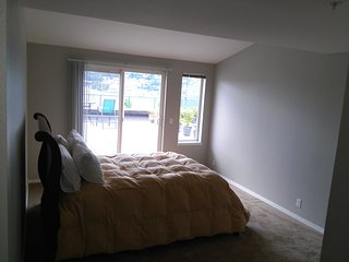 Lave Union View  Suites - Seattle vacation rentals