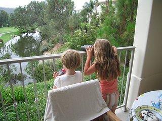 Four Seasons Residence Club in North San Diego - Carlsbad vacation rentals
