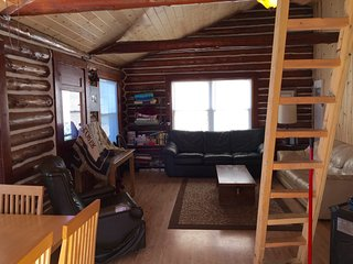 Waterfront Cottage - Houghton Lake Michigan - East Bay - Houghton Lake vacation rentals