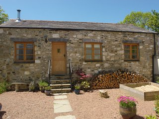 Mill House Barn - Okehampton vacation rentals