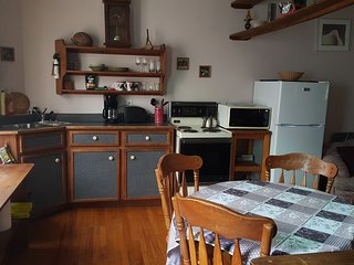 45 Gower St located in the heart of down town. - Saint John's vacation rentals