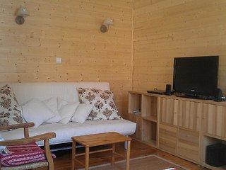 Centre Ville, T2, 50 m2, parking privé - Ax-les-Thermes vacation rentals