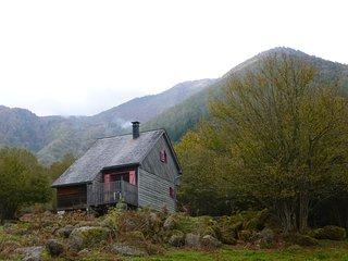 Les chalets de la forêt d'Issaux, chalet rouge - Osse-En-Aspe vacation rentals