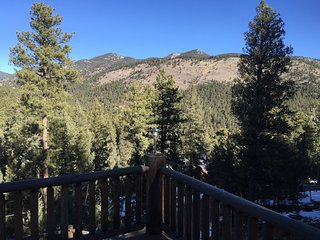 Mountain Escape - Evergreen vacation rentals