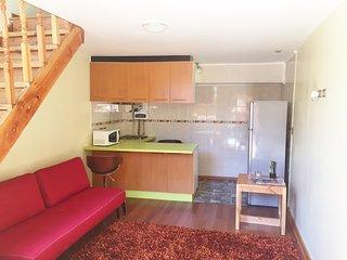 Comfortable 1 bedroom Condo in Temuco with Internet Access - Temuco vacation rentals