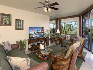 Comfortable Condo with Internet Access and A/C - Wailea vacation rentals
