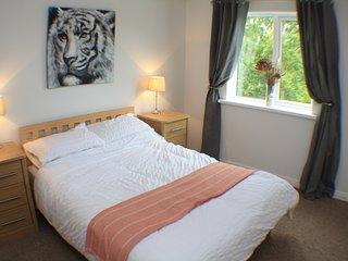 Hartley Bridge Victoria Dock Apartment - Kingston-upon-Hull vacation rentals