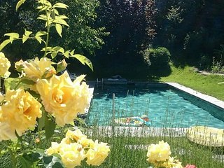 Mansion with Pool on Lake / Villa am See mit Pool - Horgen vacation rentals