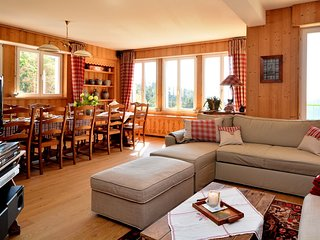 Nice Condo with Internet Access and Wireless Internet - Sainte-Marie-aux-Mines vacation rentals
