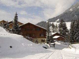 Lovely Ski chalet with Internet Access and Satellite Or Cable TV - Lenk-Simmental vacation rentals
