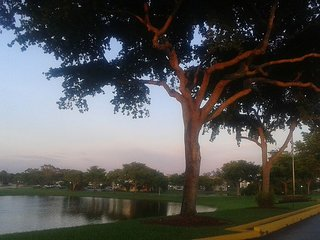 Apartment Rental Season.deerfield Beach Florida - Fort Lauderdale vacation rentals
