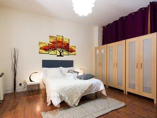 GRAN VIA CENTRO APARTAMENTO 26 - Madrid vacation rentals